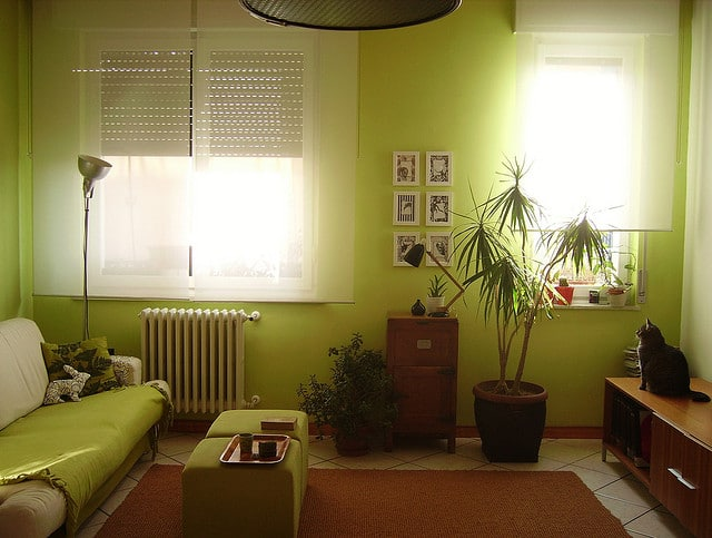 Green_home_interior
