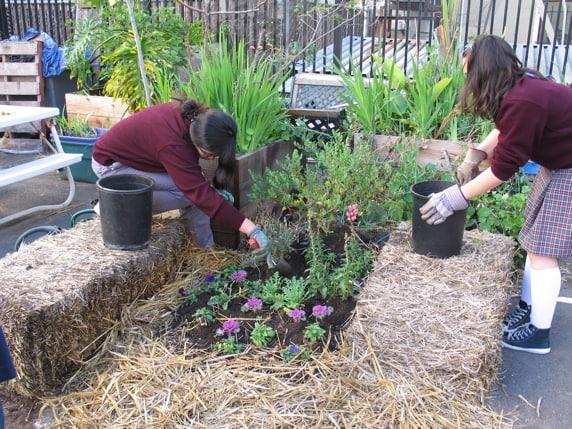 environmental-education