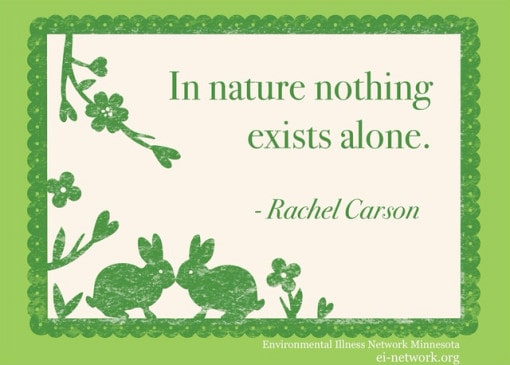 Rachel-Carson-environmental-quote