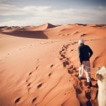 Desert Biome, and Major Types of Deserts on Earth