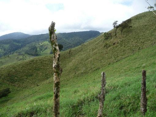La Fortuna - Costa Rica - 004