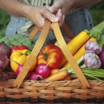 What is Organic Farming? What is the Need and Key Features of Organic Farming