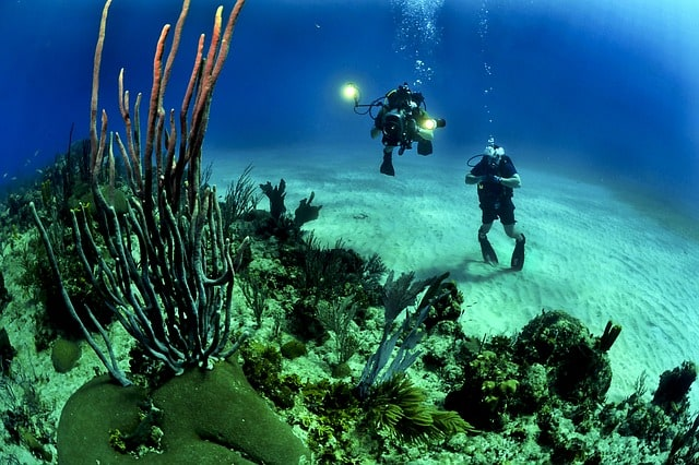 divers-scuba-reef-underwater-sea-coral-reef