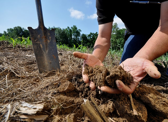 hands-with-soil-to-improve-soil-ecosystem-function