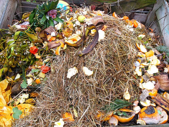 composting-in-the-garden