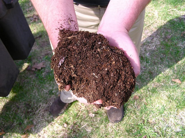 great-compost-in-hand