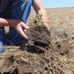What is Soil Conservation and Methods of Soil Conservation