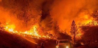 wildfire-firemen-fire-flames-hot