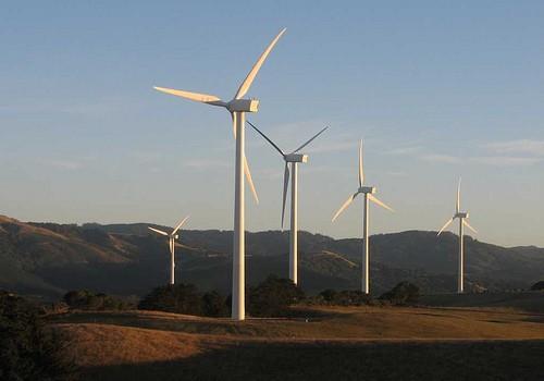 Toora-wind-farm
