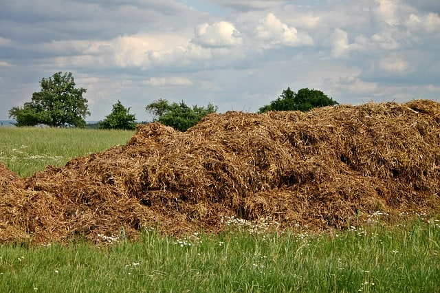 dung-crap-space-crap-agriculture