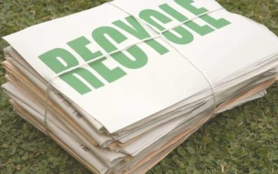 How Paper is Recycled: Step-by-Step Process (and Benefits Too)