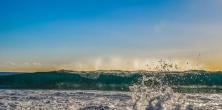 wave-foam-spray-sea-water-nature