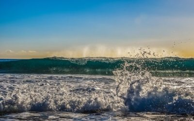 What is Wave Energy and How Wave Energy is Converted into Electricity?