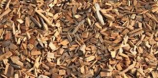 wood-chips-wood-chips-chopped