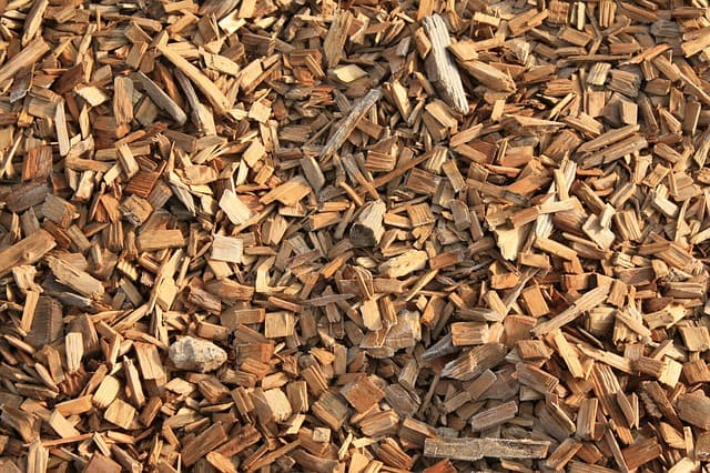 What is biomass energy and how does work