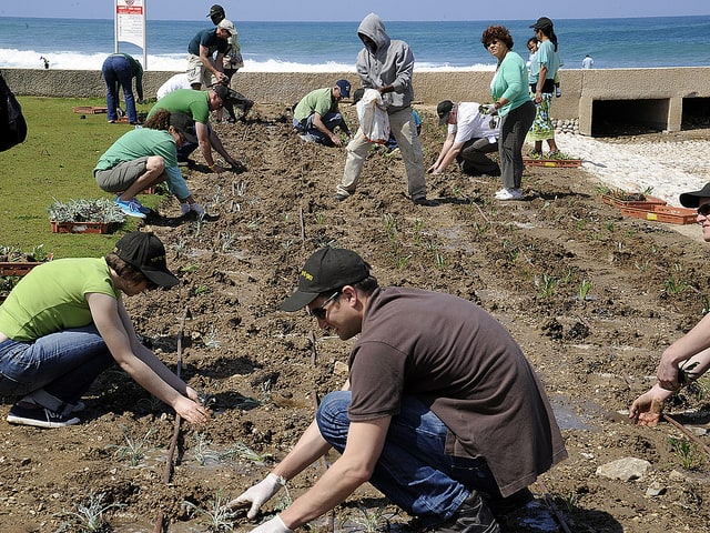 People-planting-samplings-Earth-Day