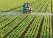 How Chemical Fertilizers Cause Water Pollution?
