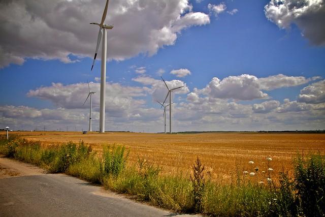 Windmill_plants