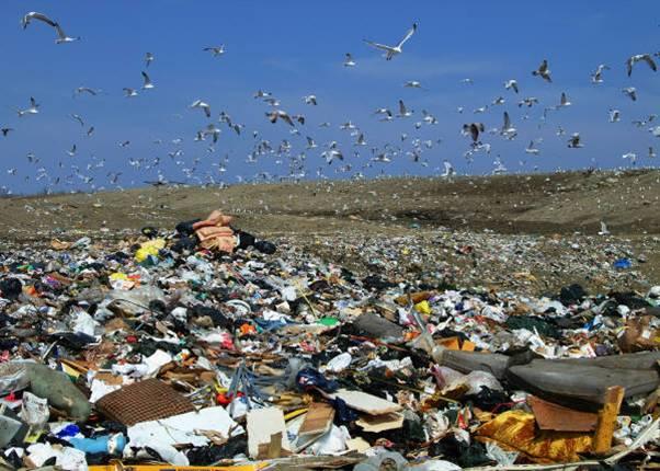 open-landfill