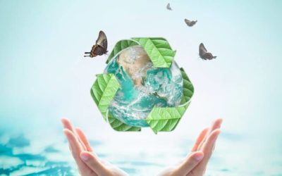Importance of Recycling and Why Should We Recycle