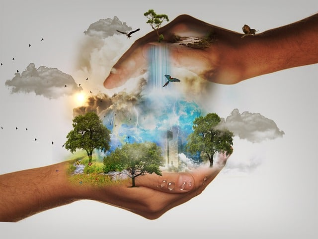 Sustainable Development Goals Importance And Examples Conserve