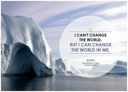 Bono-environmental-quote