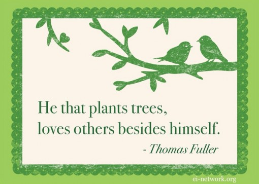Thomas-fuller-environmental-quote