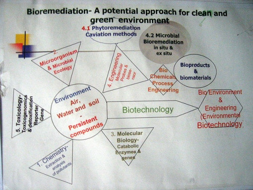 Bioremediation-poster