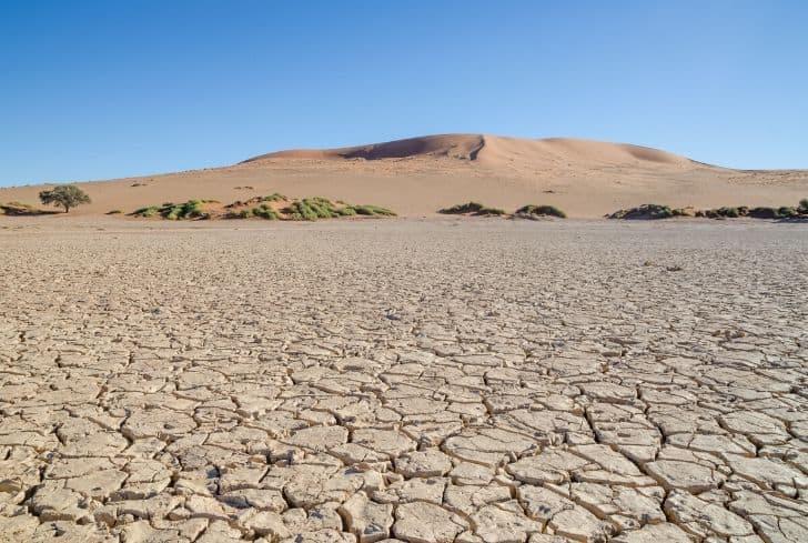 land-degradation-desertification