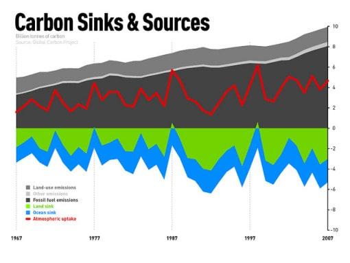 carbon-sink-sources