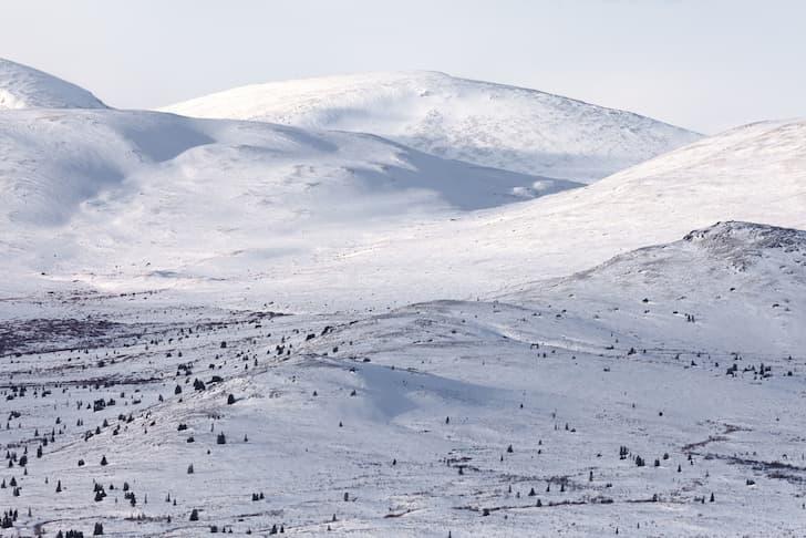 photo-alpine-tundra-in-winter