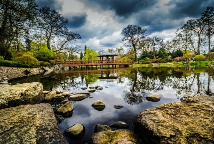 grassland-biome-lake