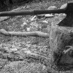 axe-blade-block-carpentry-cut-stop-deforestation