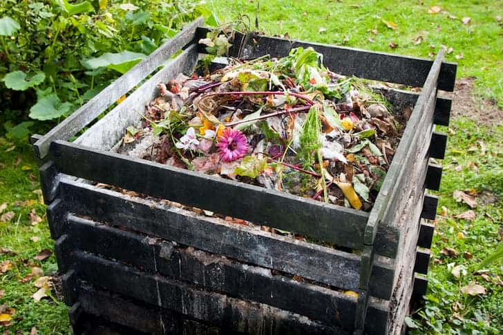 photo-compost-bin-heap
