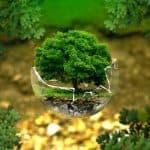 environmental-protection-earth-friendly