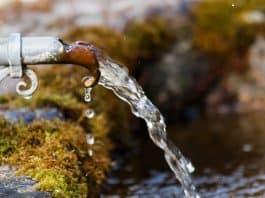 fountain-stone-trough-moss-bemoost