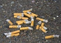 Smoking: a Polluting Habit