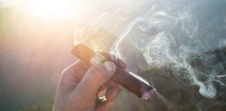 cigar-cigarette-smoking-smoker