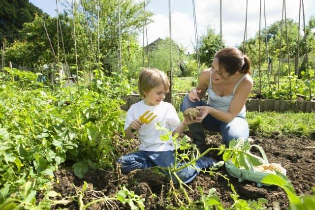 mom-child-doing-gardening