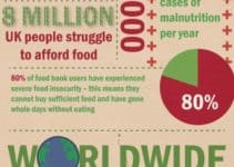 The Cost of Wasted Food [Infographic]