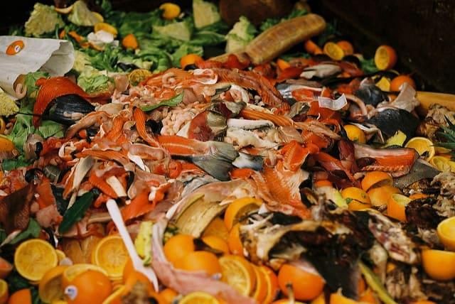 food-waste-america
