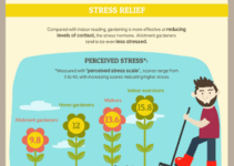 Why Gardening is Good For Your Health [Infographic]