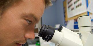 people-scientist-microscope-white