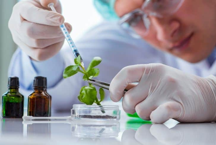 role-of-biotechnology