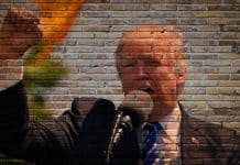 trump-president-america-politics