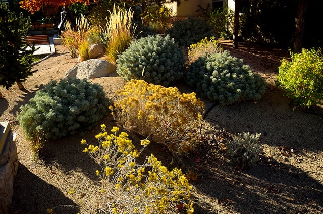10 Eco Friendly Landscaping Ideas Conserve Energy Future