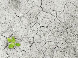 climate-change-climate-drought