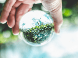 person-hand-globe-earth