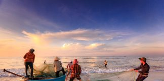 fishermen-fishing-sea-asia-vietnam