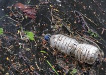 Various Environmental Pollutants and Their Terrible Effect on Our Environment